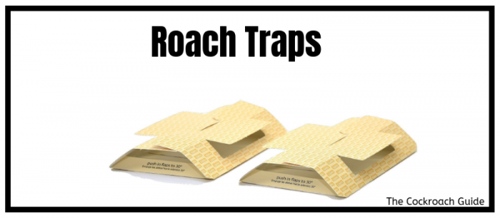 Cockroach control by using traps